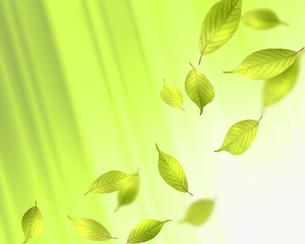 エコロジーの写真素材 [FYI00275376]
