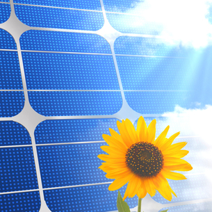 ソーラーパネルの写真素材 [FYI00275520]