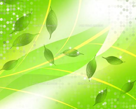 エコロジーの素材 [FYI00275631]
