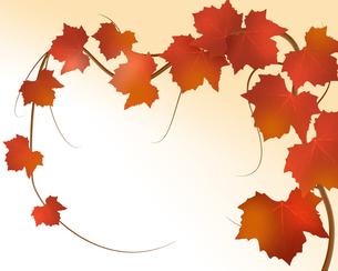 葡萄の葉とつるの写真素材 [FYI00275707]