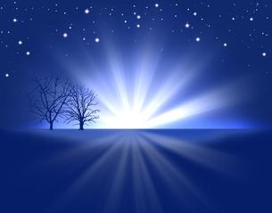 冬の夜空の写真素材 [FYI00275829]
