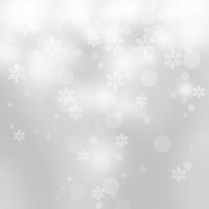 雪の結晶の写真素材 [FYI00276008]