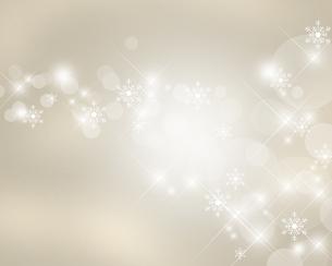 雪の結晶の写真素材 [FYI00276069]