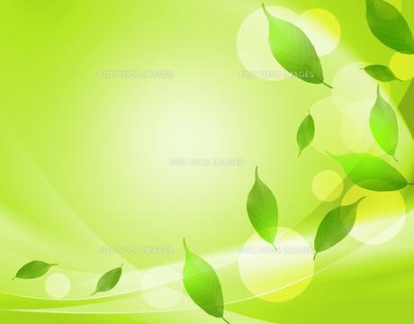 エコロジーの素材 [FYI00276158]