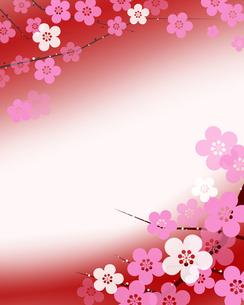 梅の花の写真素材 [FYI00276232]