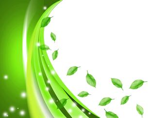 エコロジーの写真素材 [FYI00276412]