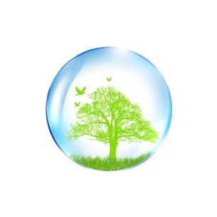 エコロジーの写真素材 [FYI00276576]