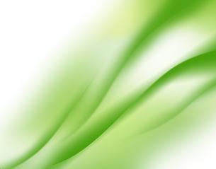 エコロジー背景の写真素材 [FYI00276623]