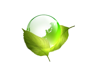 エコロジーの写真素材 [FYI00276692]