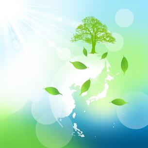 エコロジーの写真素材 [FYI00276716]