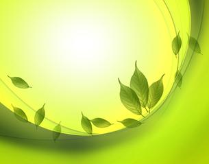エコロジーの写真素材 [FYI00276796]