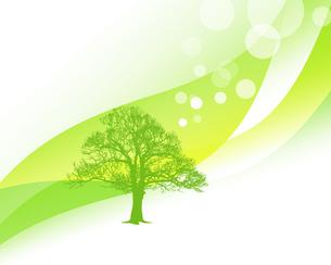 エコロジーの写真素材 [FYI00276848]