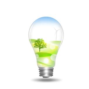 エコロジーの写真素材 [FYI00276992]