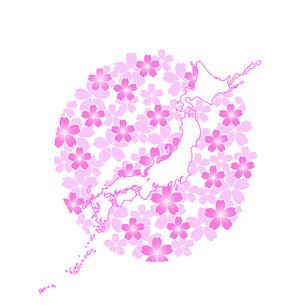 日本地図とサクラの写真素材 [FYI00277267]