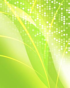 エコロジー背景の写真素材 [FYI00277506]