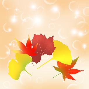 秋の写真素材 [FYI00277563]