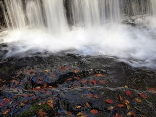 滝壺と落ち葉の写真素材 [FYI00277753]