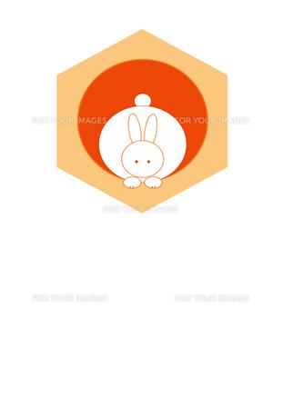 亀甲と日の出と前向きのウサギの素材 [FYI00277976]