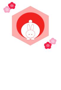 梅花と亀甲と日の出とまんまるウサギ ピンク系のイラスト素材 [FYI00278037]