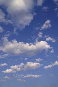 ちぎれ雲の写真素材 [FYI00278122]