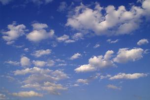 たくさんのちぎれ雲が浮かぶ初夏の空の写真素材 [FYI00278124]