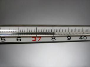 水銀体温計 38.1℃の写真素材 [FYI00278125]