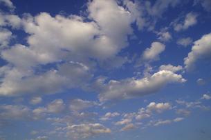 ちぎれ雲が流れる空の写真素材 [FYI00278127]