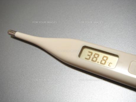 デジタル体温計 38.8℃の写真素材 [FYI00278130]