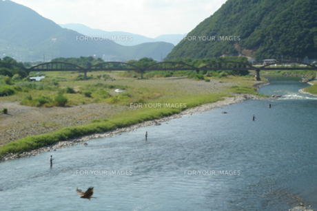 千曲川の釣り人と鳶の写真素材 [FYI00278203]