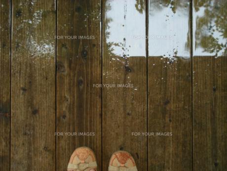 雨に濡れたウッドデッキの写真素材 [FYI00278284]