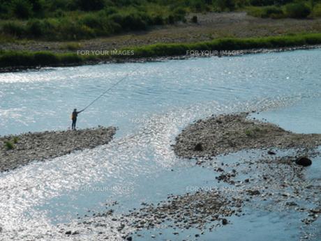 竿を上げる鮎釣りの人の写真素材 [FYI00278329]