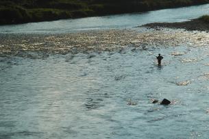 逆光の千曲川の浅瀬と釣り人の写真素材 [FYI00278376]