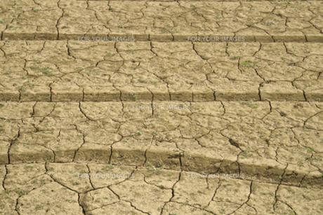 ヒビ割れた畑の土の素材 [FYI00278386]