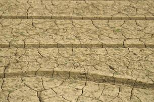 ヒビ割れた畑の土の写真素材 [FYI00278386]