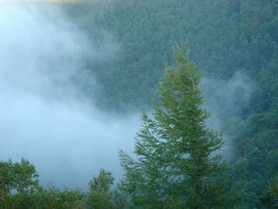 山で発生した霧の写真素材 [FYI00278427]