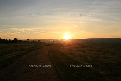 sunriseの写真素材 [FYI00278487]