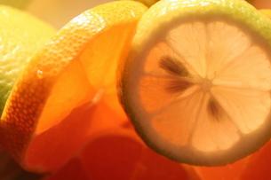 スライスレモンの素材 [FYI00278543]