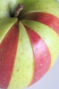 二色のりんごの写真素材 [FYI00278570]