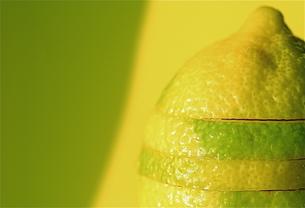 黄緑と黄色のレモンの写真素材 [FYI00278584]