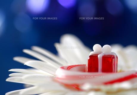 キャンディケインとガラスのプレゼントの写真素材 [FYI00278618]