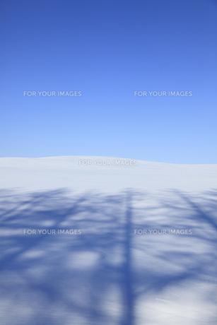 雪原の風景の素材 [FYI00278764]