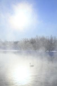 冬の水辺の写真素材 [FYI00278772]