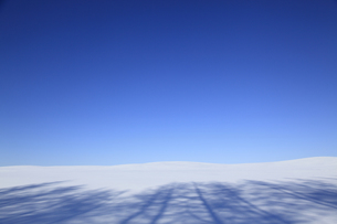 雪原の風景の素材 [FYI00278776]