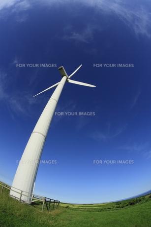 風力発電用風車の素材 [FYI00278973]