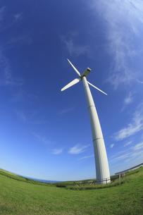 風力発電用風車の写真素材 [FYI00279017]