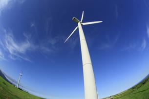 風力発電用風車の写真素材 [FYI00279049]