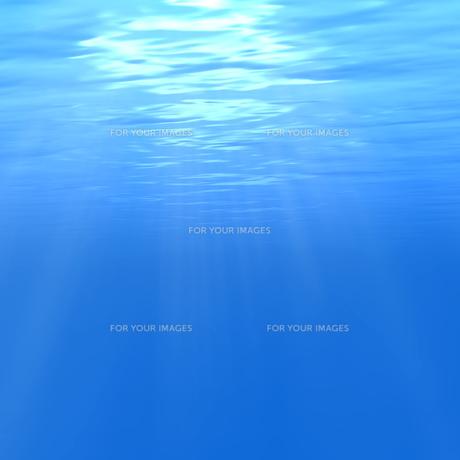 水中イメージの素材 [FYI00279298]
