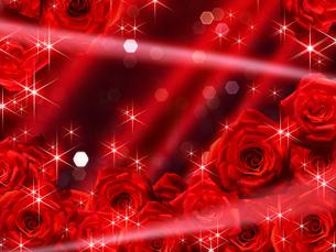 赤い薔薇の背景素材の素材 [FYI00279330]