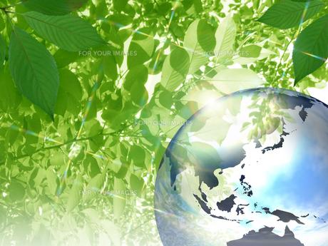 エコロジーイメージの素材 [FYI00279601]