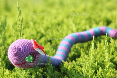 あみぐるみ ヘビの女の子の写真素材 [FYI00279927]